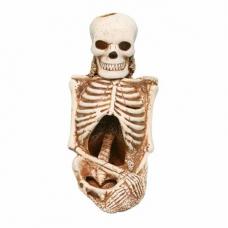 Скелет керамический